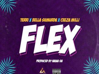 Lakizo ft. Terri, Bella Shmurda, Ceeza Milli – Flex