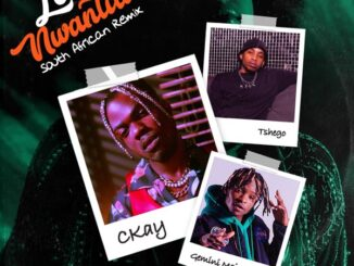 CKay ft. Gemini Major, Tshego – Love Nwantiti (South African Remix)
