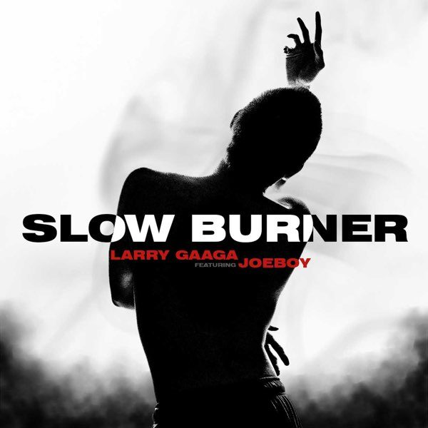 Larry Gaaga ft. Joeboy – Slow Burner
