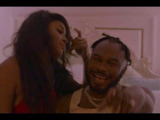 Slimcase – Erica (Video)