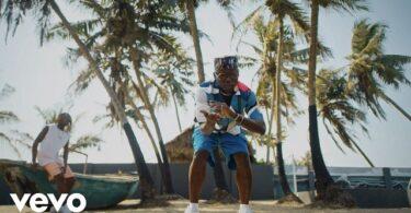 DJ Spinall ft. Fireboy DML – Sere (Video)