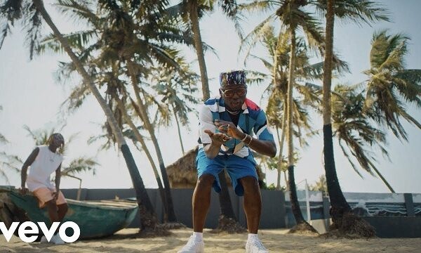 DJ Spinall ft. Fireboy DML – Sere (Video)